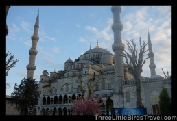 Visit my first mosque - Sultan Ahmed (Blue Mosque)